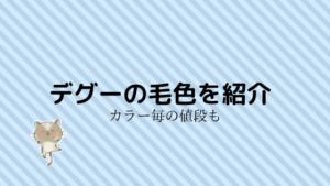 【保存版】デグーの値段!カラー(色)ごとの平均の価格を紹介!