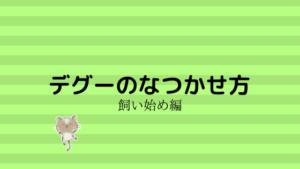 【必読】デグーがなつくコツとテクニック!なつかせ方と一週間の行動!