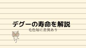 【必読】デグーの寿命について!毛色ごとに寿命が違う?長く生きてほしい!