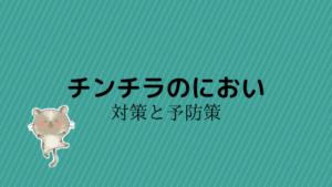 【保存版】チンチラの臭い!対策と予防